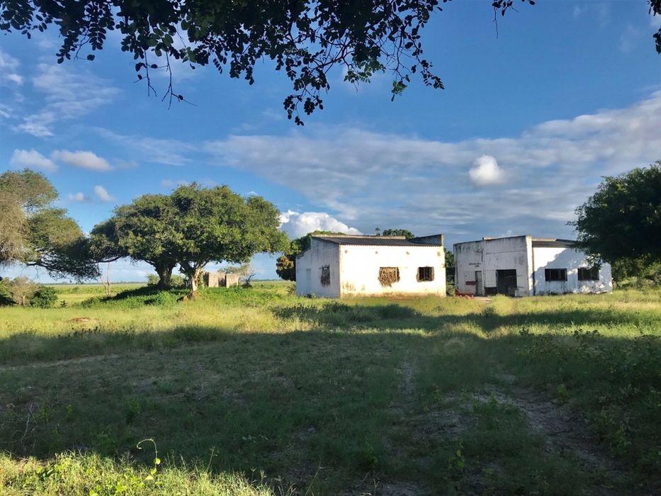 Macaneta River Frontage Property/490hectares Marracuene - imagem 6