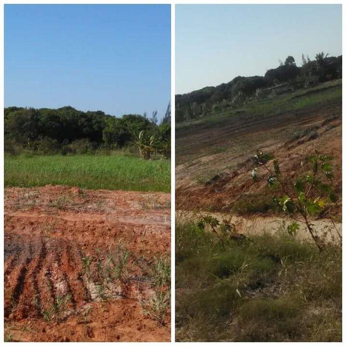 Vendo Terreno em Moamba 5 hectares