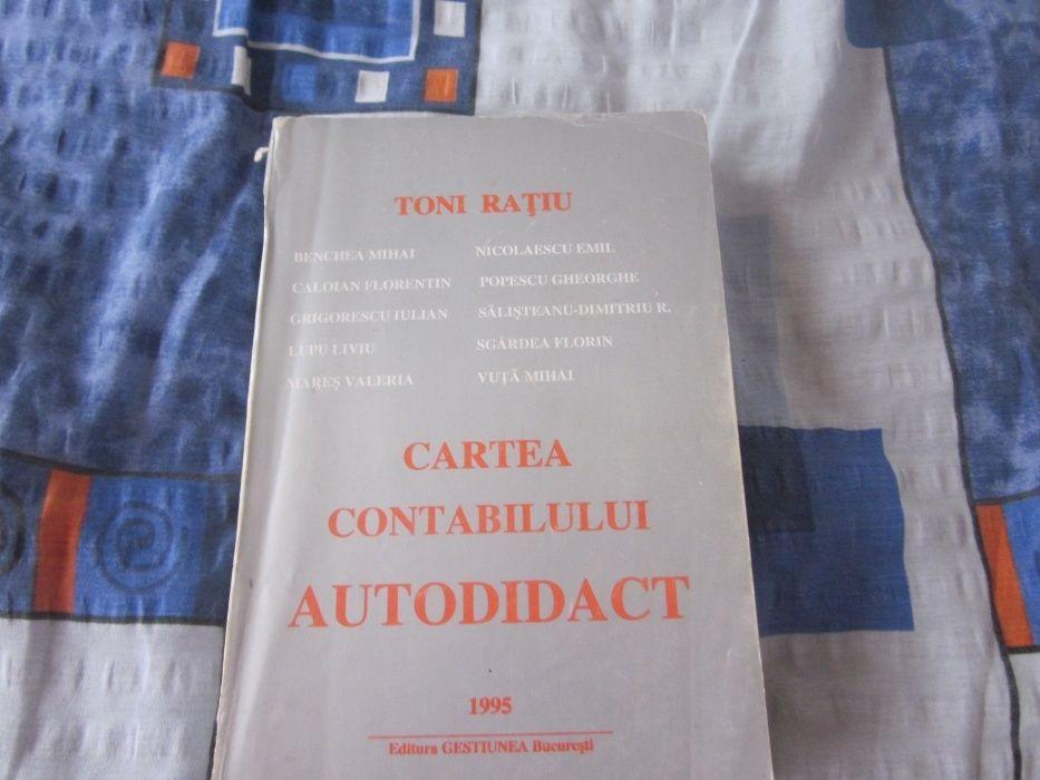 Cartea contabilului autodidact