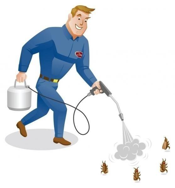 Дезинфекция, уничтожение насекомых: клопов, тараканов, сэс Алматы
