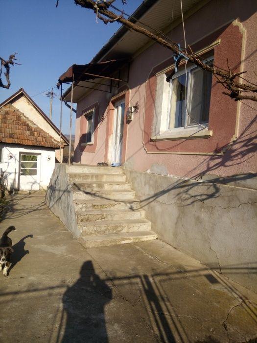Vanzare  casa  4 camere Salaj, Borza  - 40000 EURO
