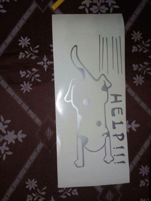 Autocolant sticker Cats