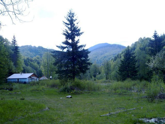 Vanzare  terenuri constructii  1800 mp Hunedoara, Uricani  - 14000 EURO