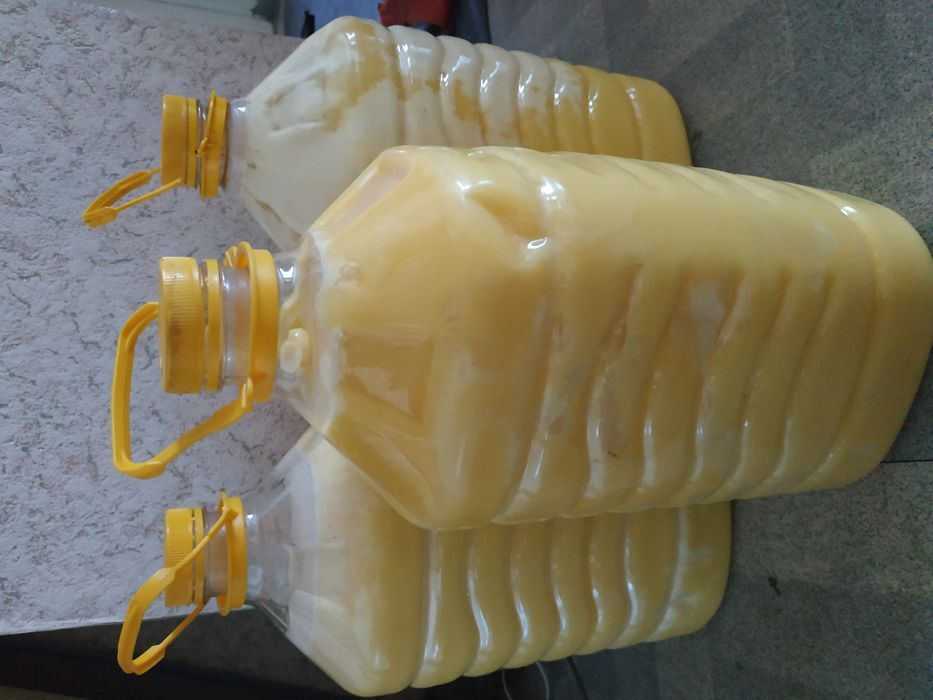 Мёд, восточно-казахстанский
