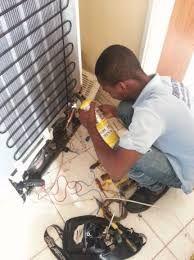 Reparação de gelaira de duas portas