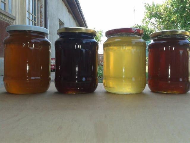 Vand miere de salcam, de mana, poliflora bio 100% naturala, organica