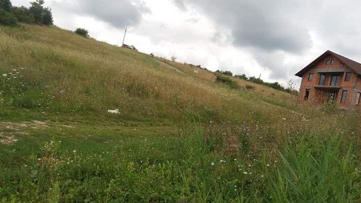 Vanzare  terenuri constructii  9200 mp Bistrita Nasaud, Sigmir  - 2800 EURO