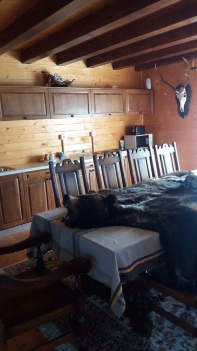 Cabana de inchiriat Suceava - imagine 7