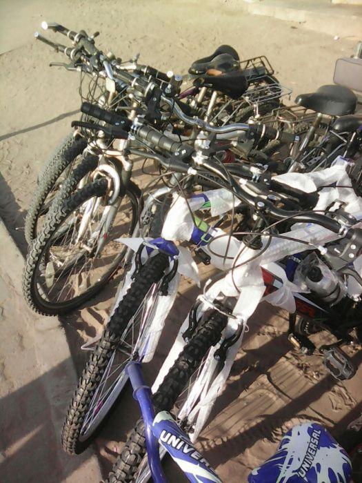 Avenda bicicletas sul Africanas para adolescentes, jovens e Adultos