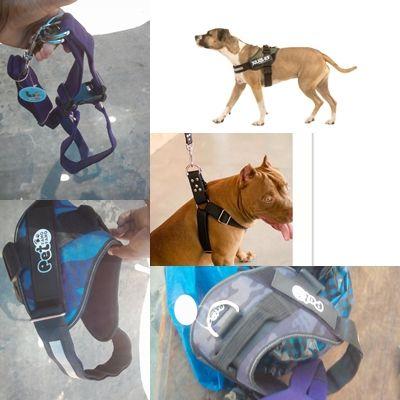 Peitorais para Cães de grande Porte
