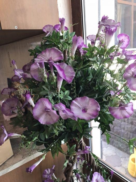 Продам искусственный цветок бу