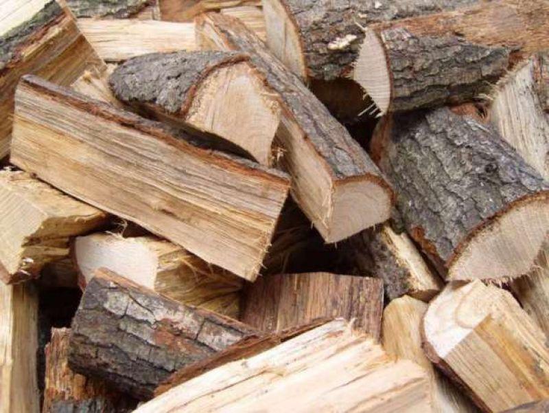 Дърва за огрев - дъб,бук