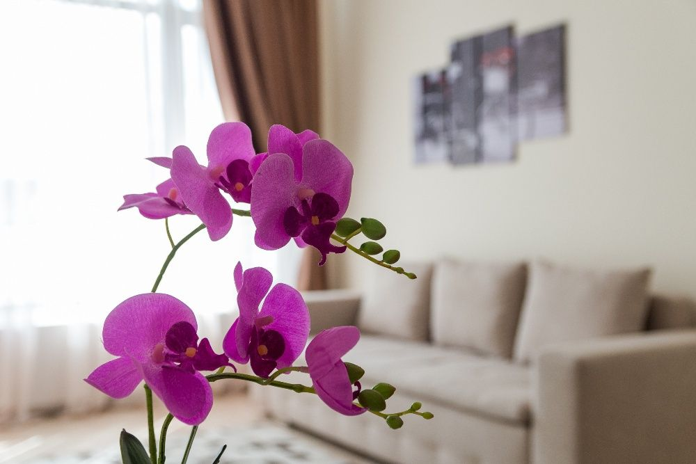 Apartamente Regim Hotelier Iasi by GlamApartments 1-2-3 Camere