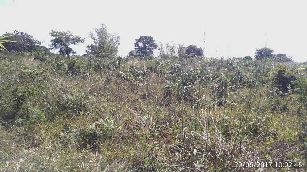 Terreno 2 hectares