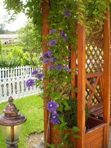 Озеленяване и поддръжка, вертикална планировка и изграждане на поливна