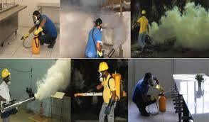 Desinfestação sem cheiro e com cheiro