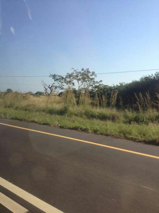 Terreno 80/80 maluana na n1