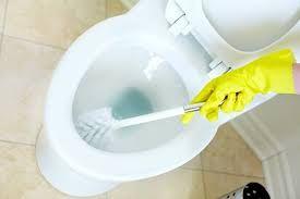 Serviços de Limpeza, Canalização e jardinagem