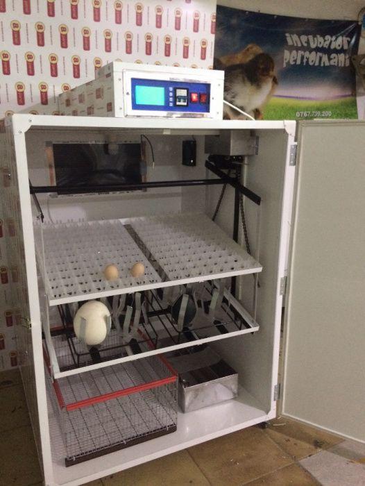 Incubator 24 oua strut, incubator oua gaina, rata , gasca, prepelite