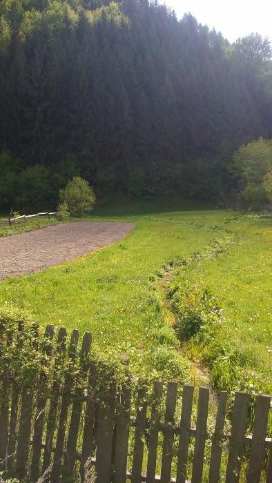 teren Rucar-Bran
