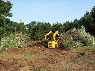 Defrisari terenuri industriale Bucuresti-Ilfov