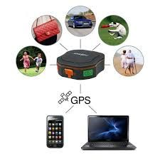 GPS a bom preço
