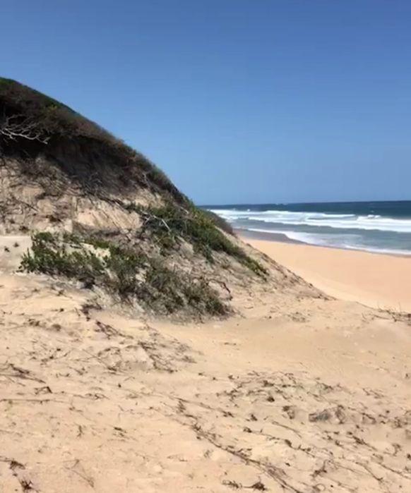 Vende-se propriedade Traspassa-se 4 hectares bem frente a Praia Duat Bilene Macia - imagem 1
