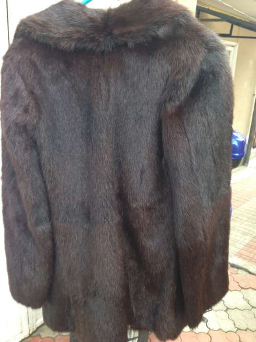 vand haina blana Marmota
