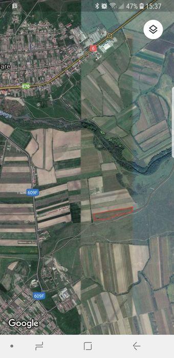 Vanzare  terenuri agricol Timis, Bucovat  - 0 EURO