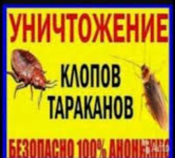 Уничтожение КЛОПОВ, тараканов. Гарантия. СЭС!