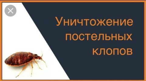 Услуги дезинсекции . Уничтожение КЛОПОВ, тараканов от специалистов СЭС