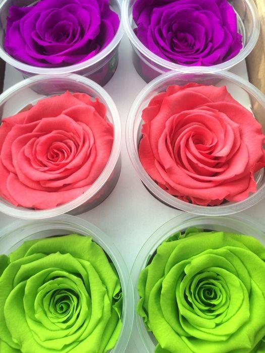 Cadou zile onomastice trandafir criogenat conservat Bucuresti - imagine 6