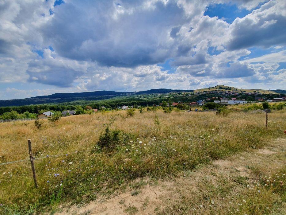 Vanzare  terenuri agricol Cluj, Salicea  - 0 EURO