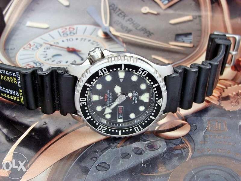citizen pro master diver