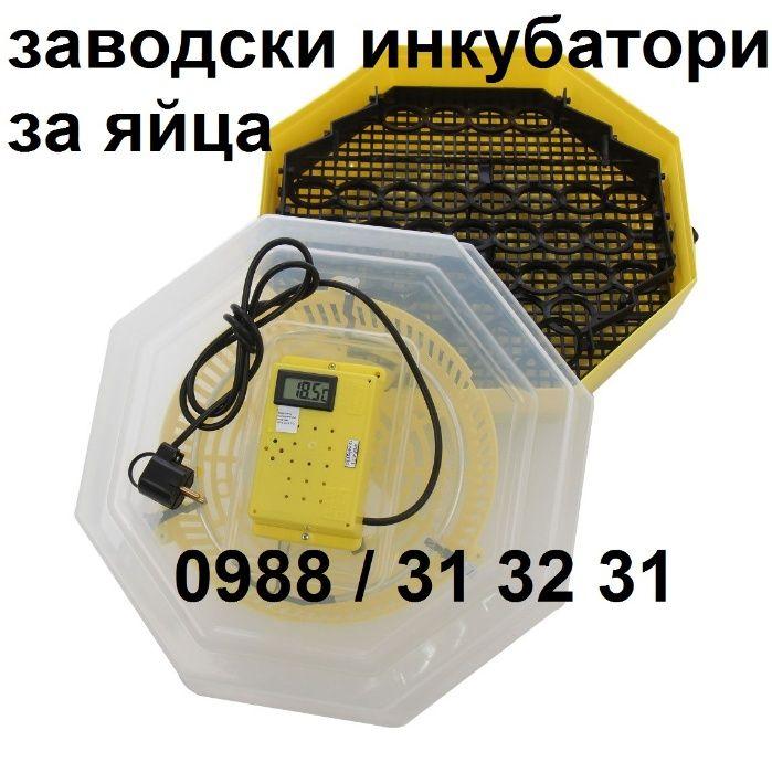 Заводски полуавтоматичен инкубатор за пилета. Инкубатори за яйца с дис