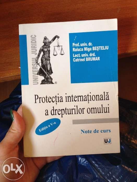 Manual protectia internationala a drepturilor omului