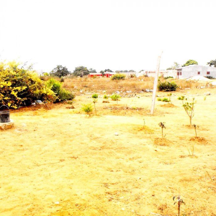 Vendemos Terreno com 6 hectaresno Bairro Bita Progresso Município de B