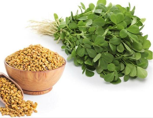 Dezactivate: Seminte de cereale comestibile :FENUGREEK schinduf 5 ...