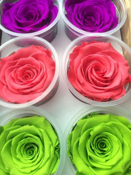 Cadou zile onomastice trandafir criogenat conservat Bucuresti - imagine 7