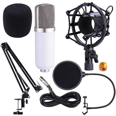 Microfon studio BM700 Kit + Wind Screen Pop Filter + Stand TH138
