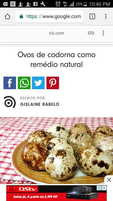 Com ovos de codorna Cuide da tua saúde sem uso de químicos