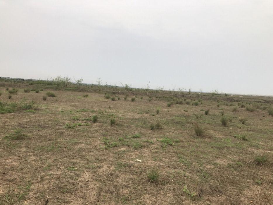 Vende-se 1000 hectares de terra no panguila
