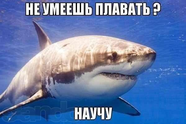 АКЦИЯ.Обучение плаванию взрослых и детей! 100% - стать рыбой в воде =)