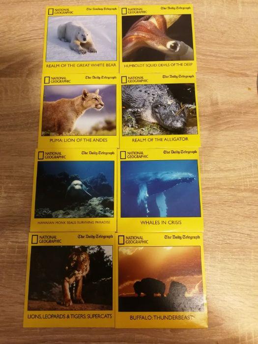 National Geographic Revista & Dvd-uri de Colectie (originale)