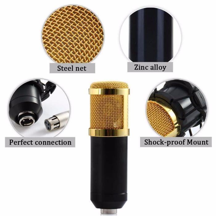 Microfon condenser Studio - Home Artist 2 CR 22