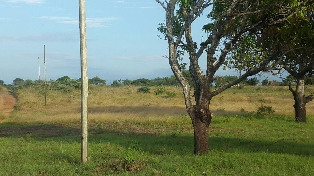 Trespasse de terra em Maracuene Possulene.