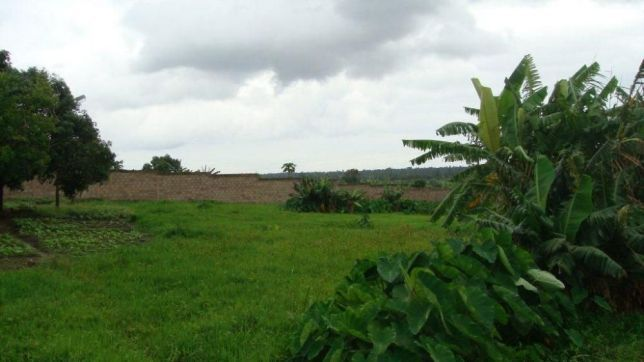 BENFICA, 5hectares Vedados na EN1. Maputo - imagem 8
