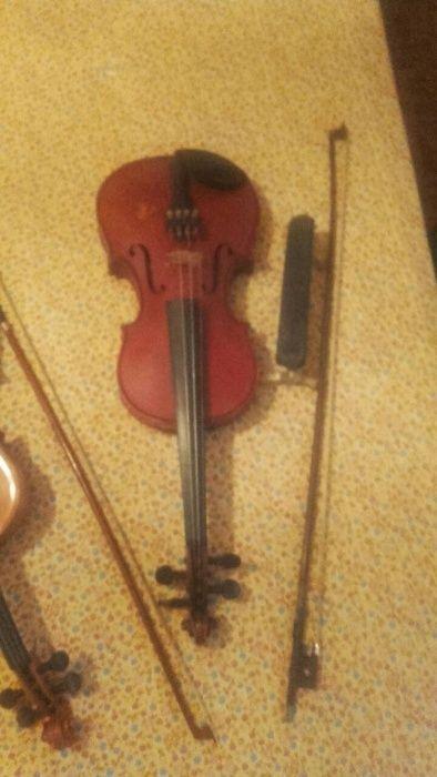 Цигулки