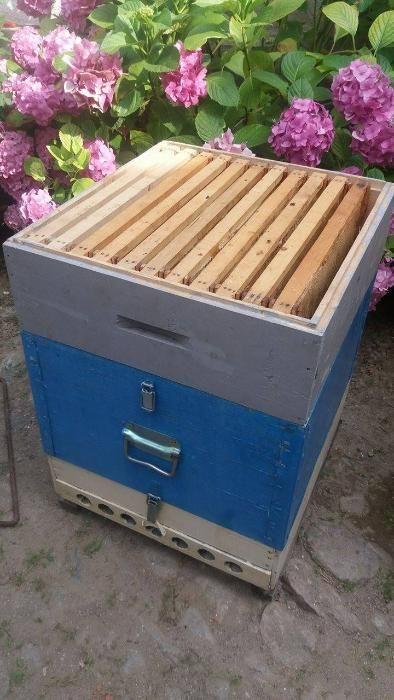 Stupi de albine/lazi de stup cu magazie
