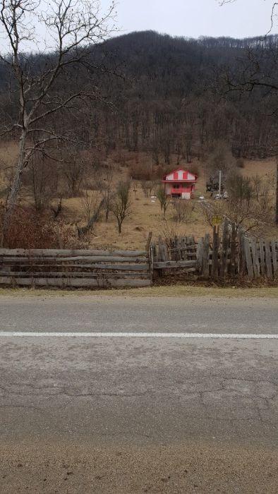 Vanzare  terenuri constructii Alba, Padure  - 0 EURO